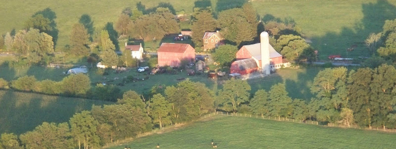 barns & fields in late afternoon